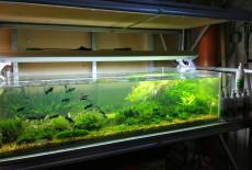 Самодельный аквариумный стеллаж