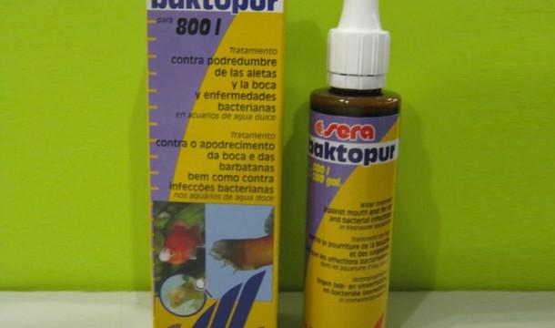 Как лечить аквариумных рыбок препаратом Sera Baktopur