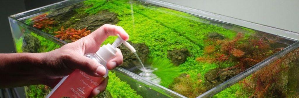 быстрорастущие аквариумные растения