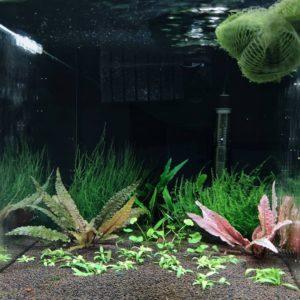 аквариум травник своими руками