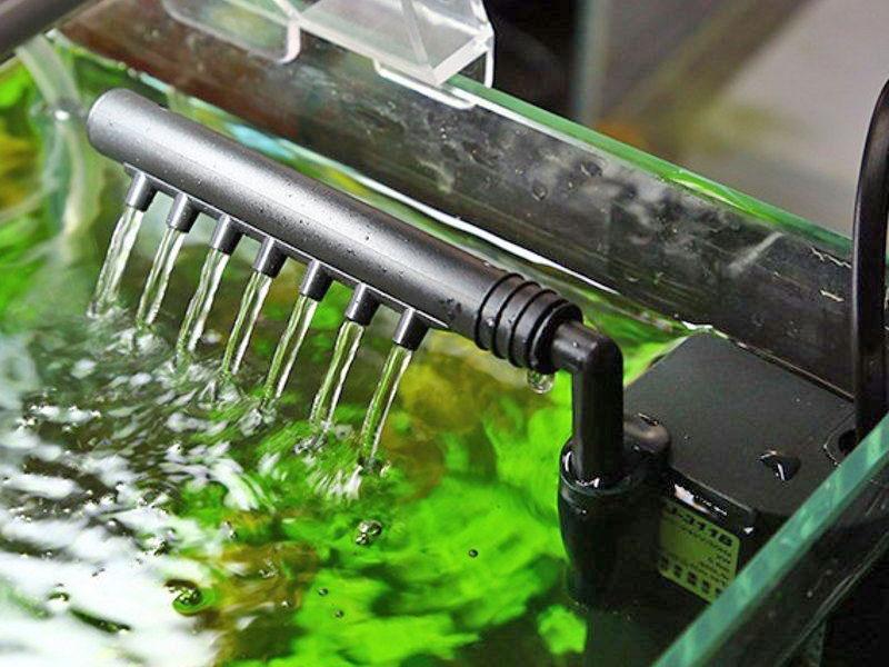 Работа аквариумной флейты