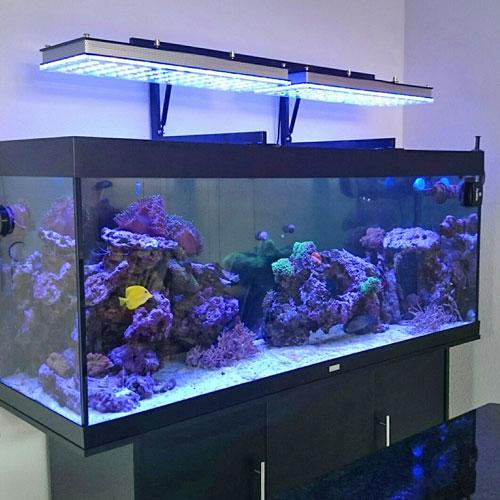 УФ стерилизатор для аквариума Встроенный в плафон подсветки