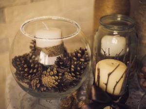 Декор из шишек из старого аквариума