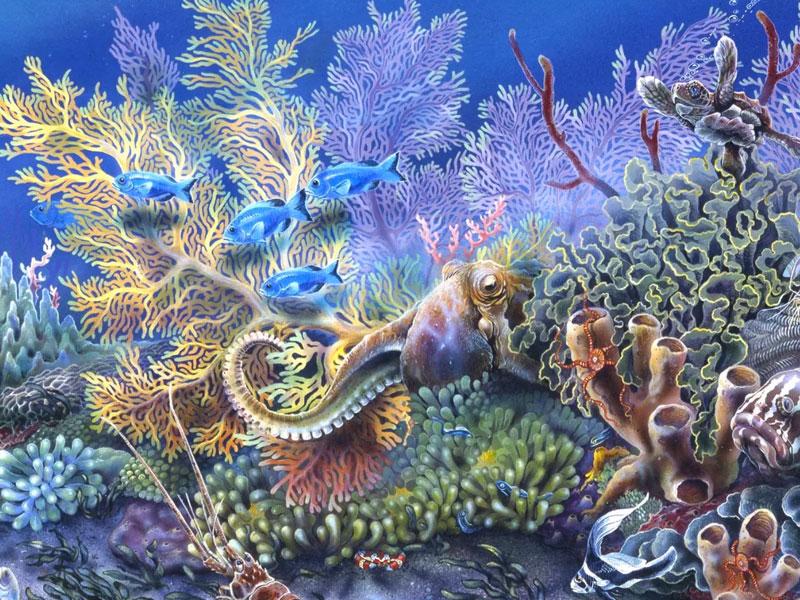 Функция декорации аквариума