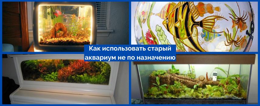 Как использовать старый аквариум не по назначению