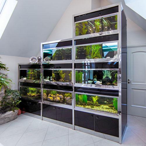 Стеллаж для аквариумов в интерьере