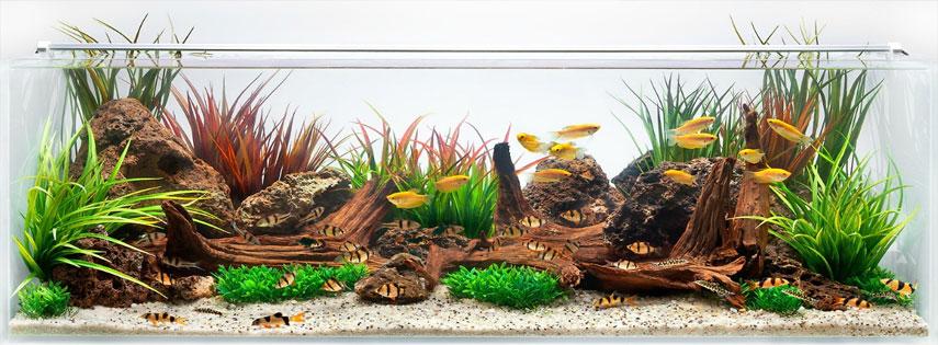 Установка декоративных элементов в аквариуме